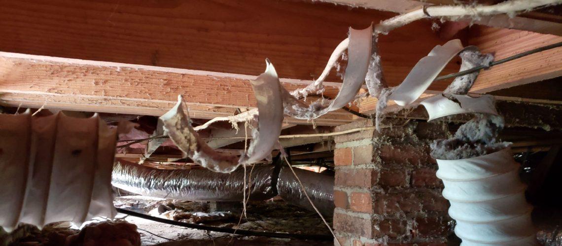 Rodent Repair Crawlspace - wildlife removal columbia sc